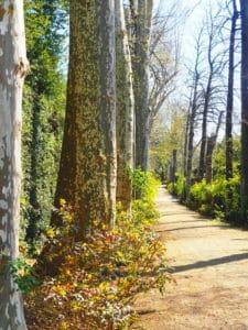 florence jardin boboli